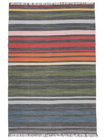 Rainbow Stripe - Grå Tæppe 140X200 Ægte Moderne Håndvævet Mørkegrå/Olivengrøn (Bomuld, Indien)