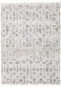 Udendørs Tæppe Trinny - Brun/Nature Tæppe 170X240 Ægte Moderne Håndvævet Lysegrå ( Indien)