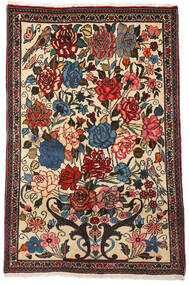 Bakhtiar Collectible Tæppe 100X154 Ægte Orientalsk Håndknyttet Mørkebrun/Beige (Uld, Persien/Iran)